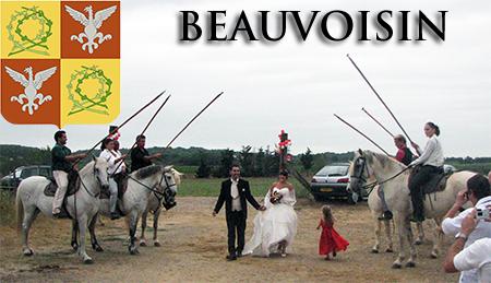 Animation mariage DJ Triangle à Beauvoisin