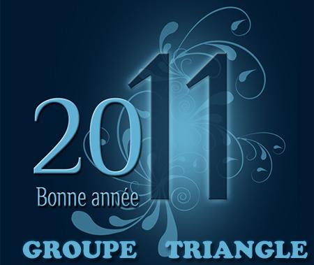 Bonne Année avec Groupe Triangle Nimes