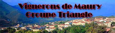 Groupe variétés Triangle Nimes - fête des vignerons à Maury