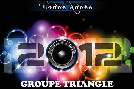 Bonne Année 2012 - Groupe Triangle