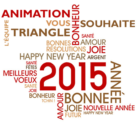 Bonne année 2015 avec Animation Triangle Nîmes