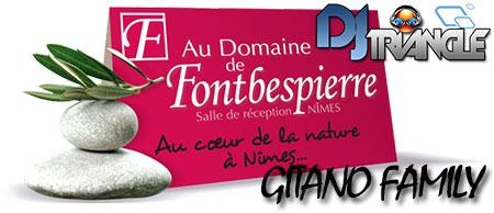 Animation mariage Au Domaine de Fontbespierre - Gitano Family et DJ Triangle.