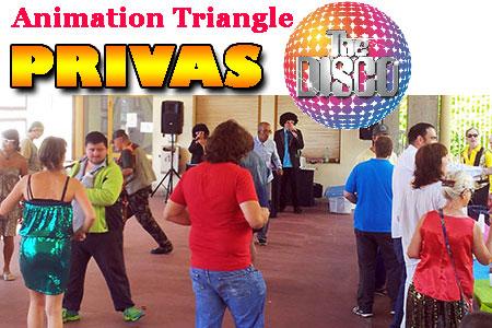 Repas dansant sur le thème du DISCO à Privas avec Animation Triangle