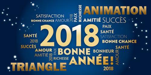 Animation TRIANGLE vous souhaite une belle et heureuse année 2018
