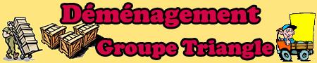 Groupe Triangle - Déménagement
